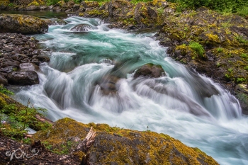 Salmon Cascades in Sol Duc Valley, Olympic National Park